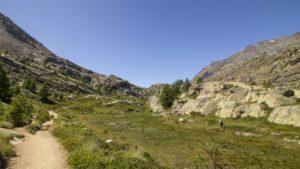 Uitzicht op een vlinderweide in het Gran Paradiso NP valley d'Aosta