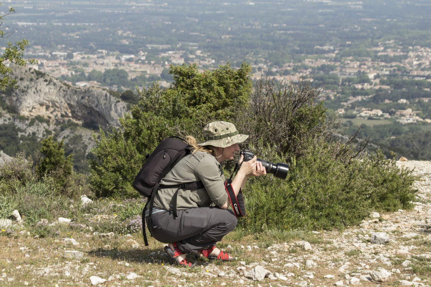 Annemieke Spoelman, Goldcrest nature tours