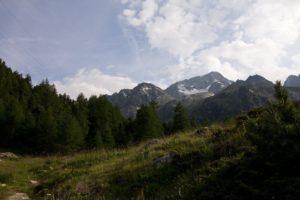 Alpenweide natuurreis Beierse Alpen